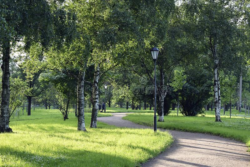 Der Weg in einem leeren Sommerpark stockfotos
