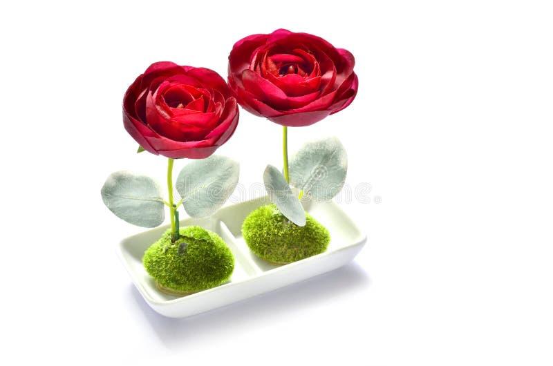 Der weiße Hintergrund mit zwei künstlichen Rosen stockbilder