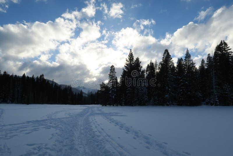 Der weiße Schnee in der einsamen Wiese stockfoto