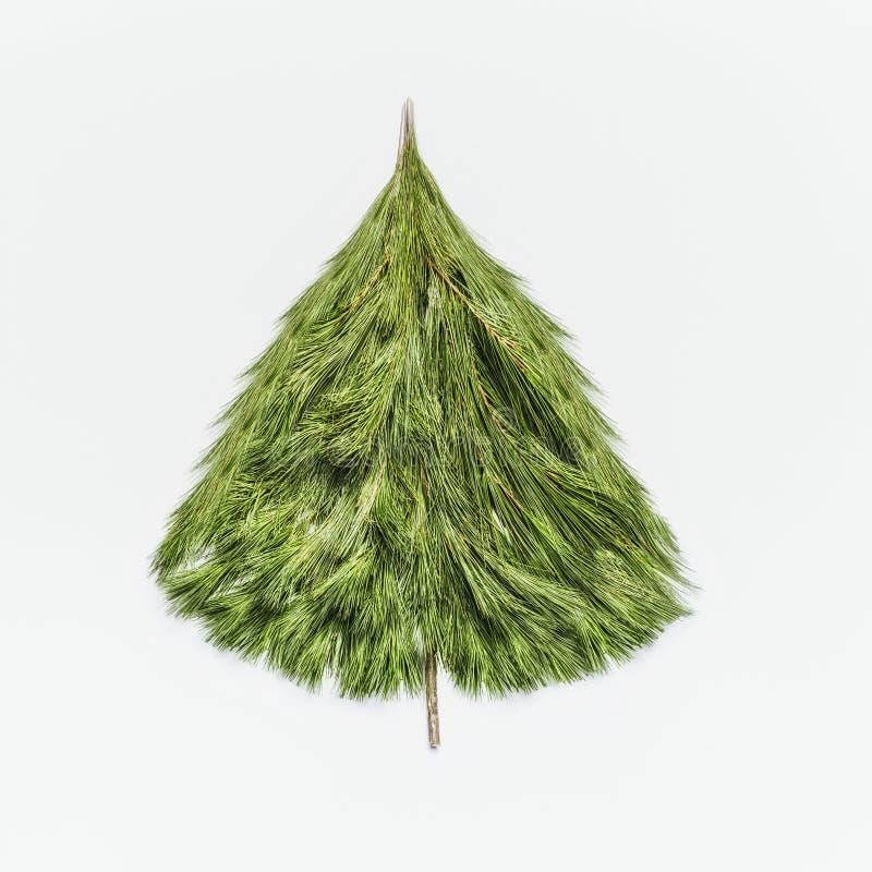Der Weihnachtsbaum, der mit Zeder gemacht wird, verzweigt sich auf weißen Hintergrund, Draufsicht Plan der Feiertagsgrußkarte lizenzfreies stockfoto