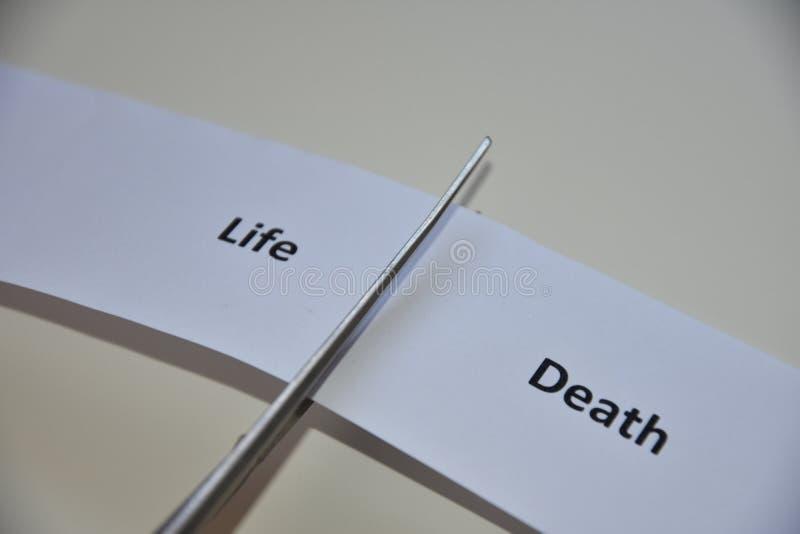 Der Widerspruch zwischen zwei Entscheidungen: Leben oder Tod stockfotos