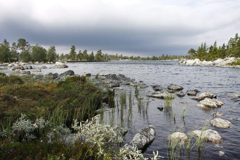 In der Wildnis von Norwegen stockbild