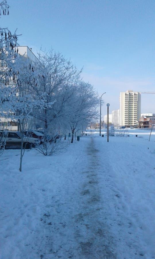 Der Winter lizenzfreie stockfotos