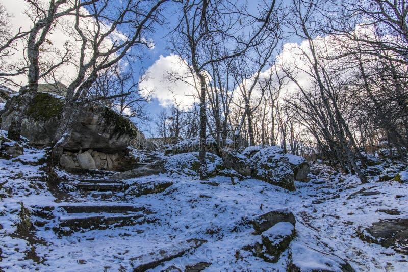 Der Winter kommt und die Schneedecken die Steigungen des ` Herreria-` Waldes an EL Escorial, Madrid, Spanien lizenzfreies stockbild