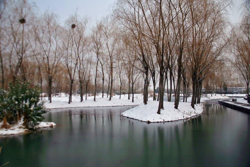 Der Winterreim des Suis und des Tang Dynastiess stockbild