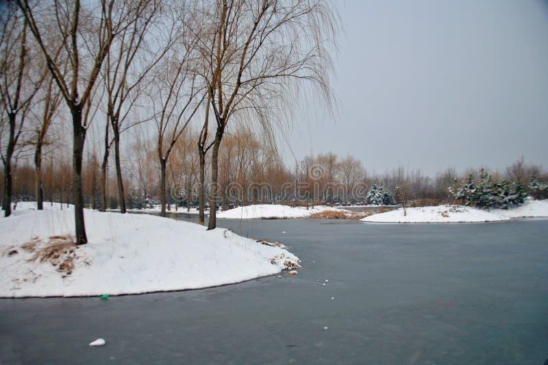 Der Winterreim des Suis und des Tang Dynastiess stockfotografie
