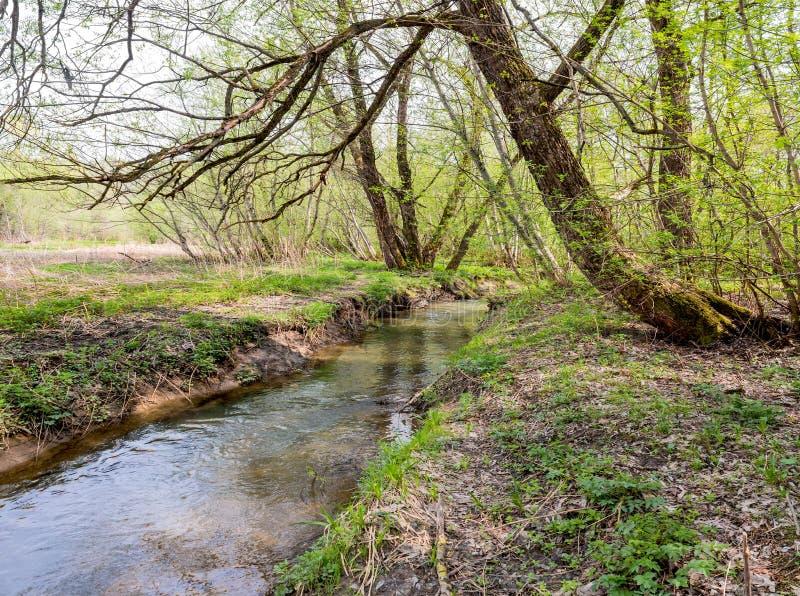 Der Yazvenka-Fluss, der das Gebiet des Tsaritsyno-Zustandes durchfließt moskau Russische Föderation lizenzfreie stockfotos