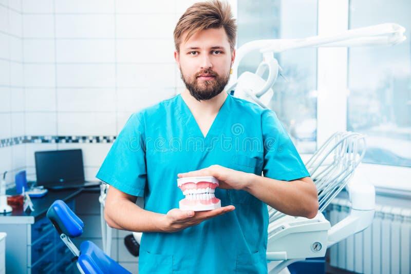 Der Zahnarzt, der Zähne hält, modellieren lizenzfreies stockfoto