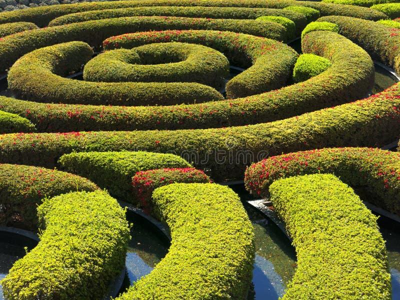 Der zentrale Garten in der Getty-Mitte lizenzfreie stockfotografie