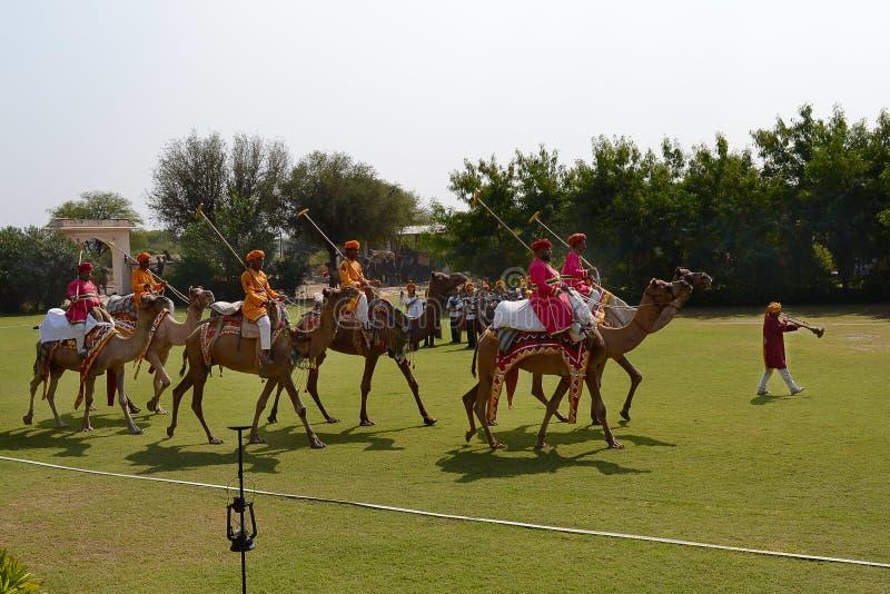 Dera Amer Elephant Safari Camel Polo arkivfoto