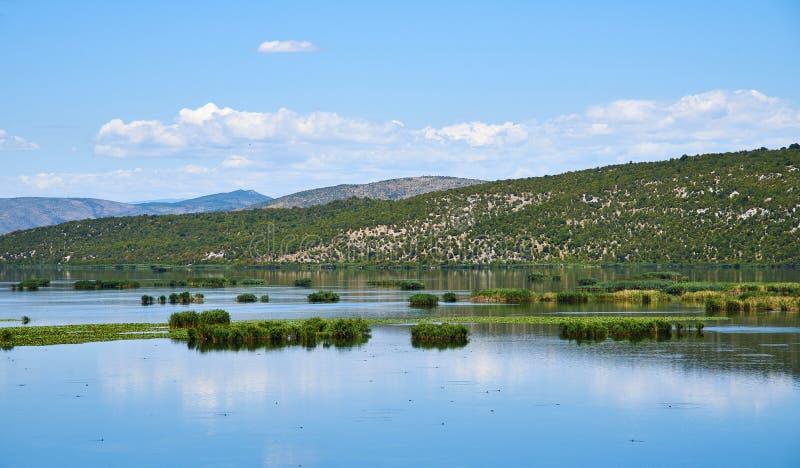 Deransko sjön, den Hutovo Blato naturen parkerar, Bosnien och Hercegovina fotografering för bildbyråer