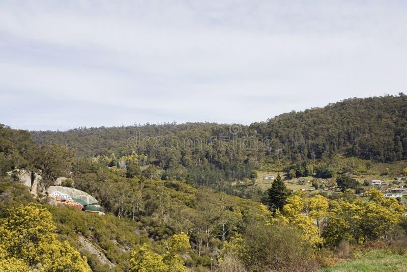 Derby landscape Tasmania stock photography