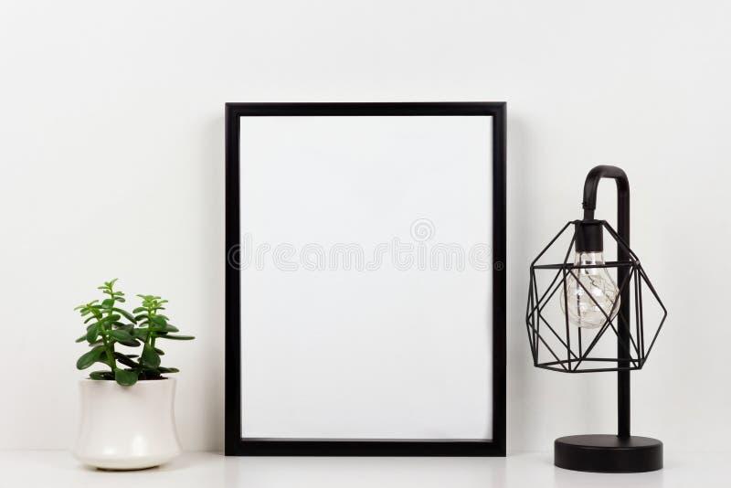Derida sulla struttura nera contro la parete bianca con la pianta e la lampada succulenti su uno scaffale bianco immagine stock
