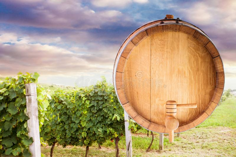 Derisione del barilotto di vino su fotografia stock libera da diritti