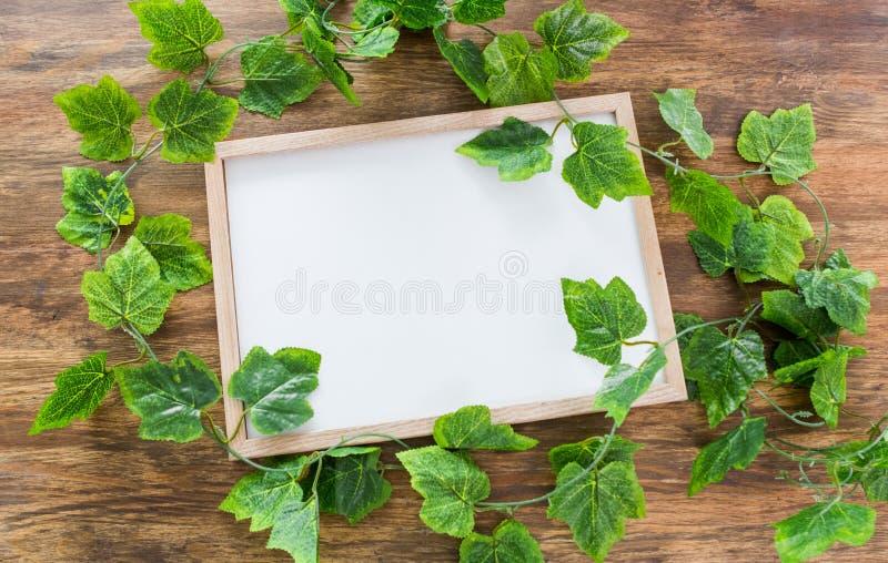 Derisione del manifesto della struttura del quadrato della pianta verde fotografia stock libera da diritti