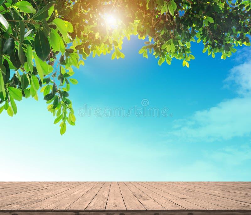 Derisione di legno vuota del pavimento della plancia sul cielo del blule fotografia stock libera da diritti