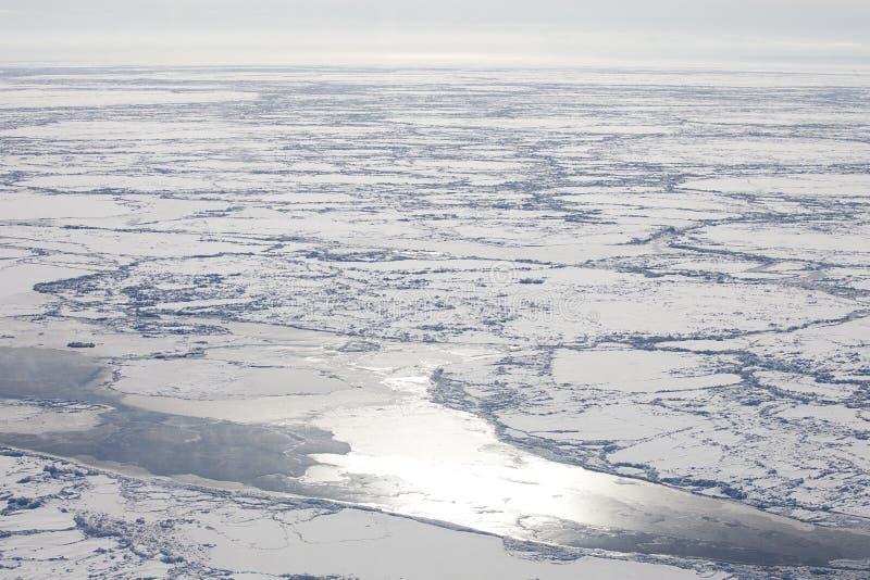 Deriva del hielo en primavera en el mar blanco foto de archivo