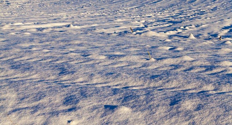 Derive della neve nell'inverno immagine stock