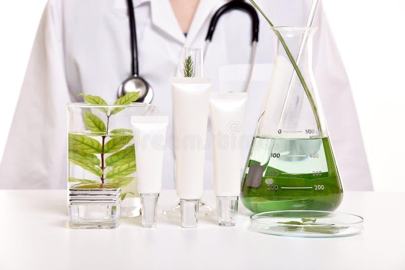 Dermatologista com cuidados com a pele naturais, descoberta orgânica erval verde do produto de beleza no laboratório de ciência fotografia de stock