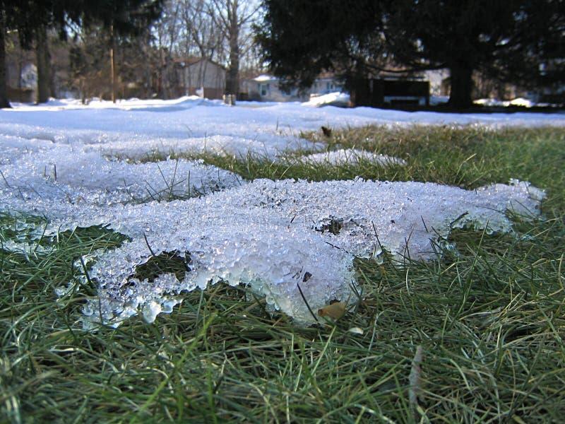 Dernière neige de la saison photo stock
