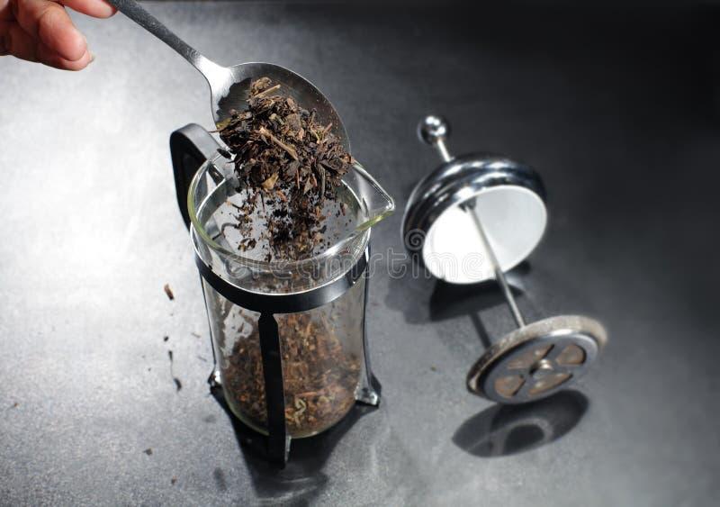 Derrame as folhas de chá secas no recipiente de vidro do fabricante da imprensa do chá fotografia de stock royalty free