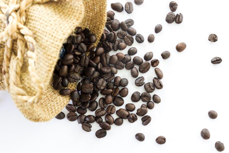 Derrame os feijões de café fora do saco em um fundo branco imagem de stock royalty free