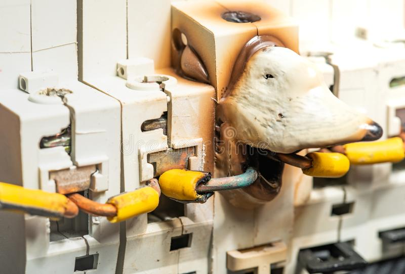Derretimento e dano da caixa do fusível elétrico ou do disjuntor devido ao poder da sobrecarga fotografia de stock royalty free