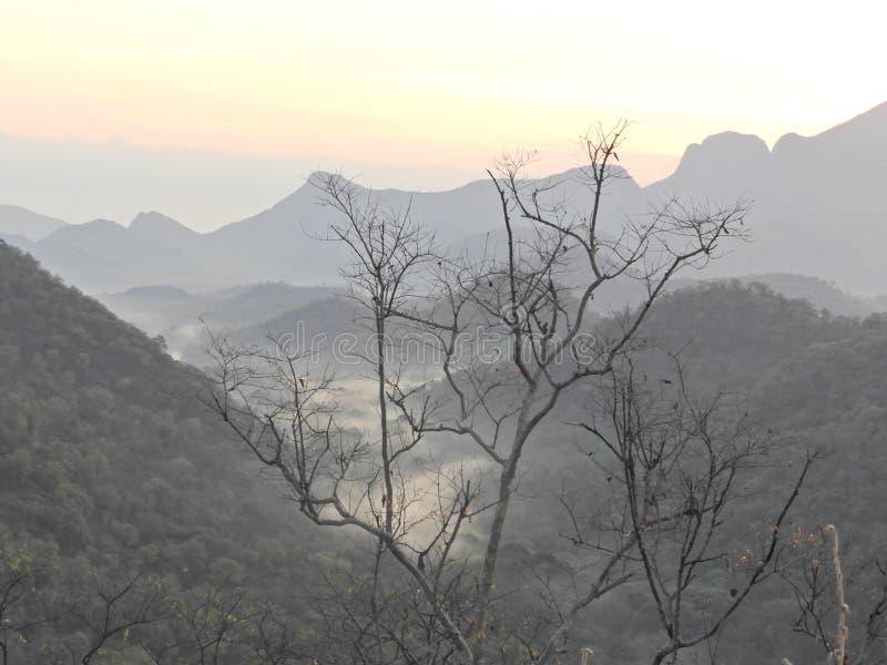 Derrière des paysages étonnants avec l'arbre sans feuilles photographie stock libre de droits