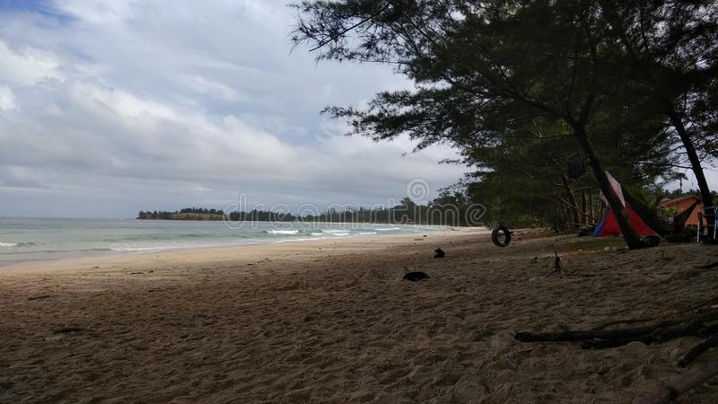 Derrube fora Bornéu foto de stock