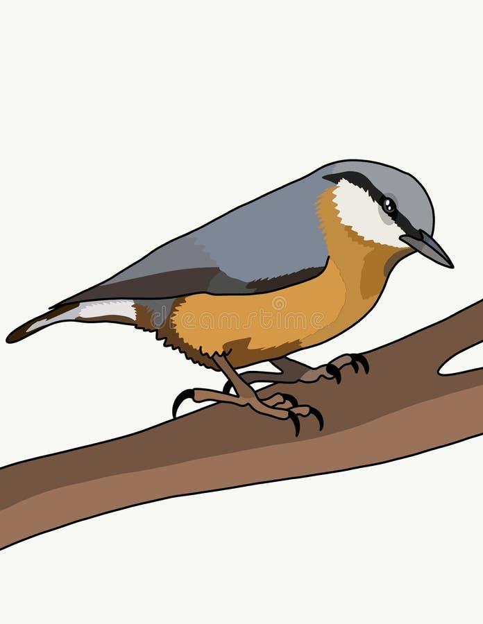 Derrumbamiento del pájaro stock de ilustración