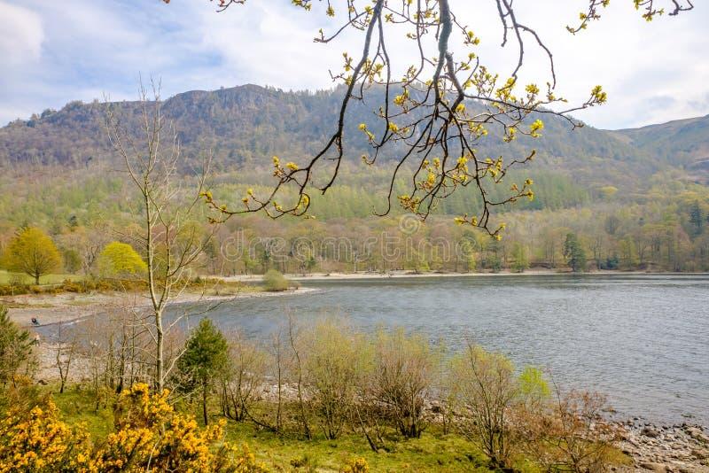 Derwent água lago distrito Cumbria opinião calma do 16 de abril de 2019 BRITÂNICO da costa do lago fotos de stock