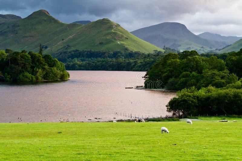 Derwent Water See-Bezirk England stockfotografie