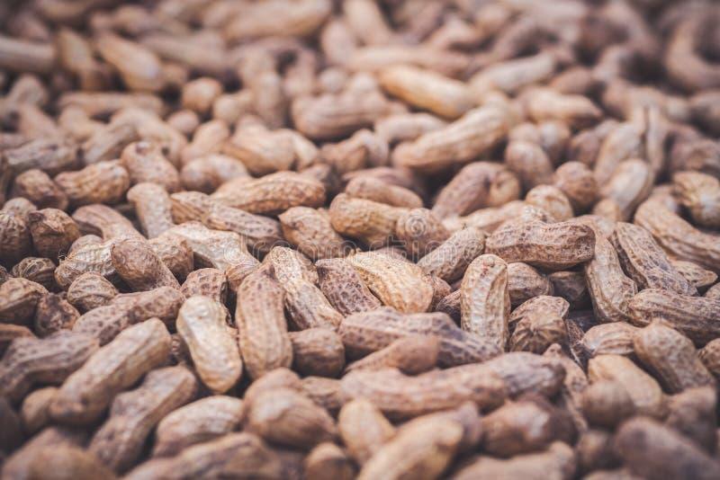 Des arachides sont séchées au soleil photographie stock libre de droits