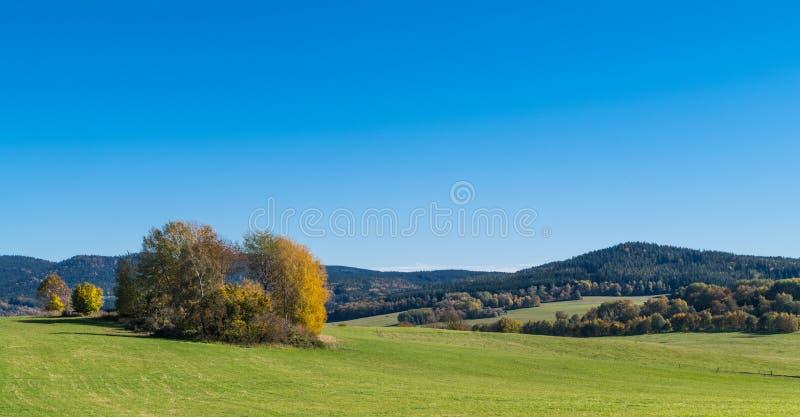 Des arbres d'automne illuminés sur un pâturage de montagne Panorama panoramique sous un ciel bleu clair image stock