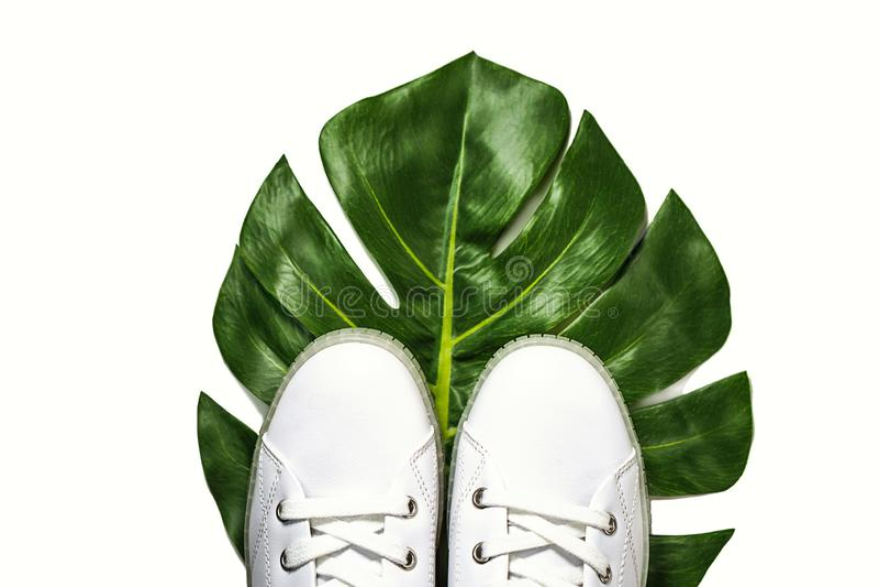 Des baskets blanches sont allongées sur une feuille de monstère verte sur un fond blanc, isolées Vue supérieure images stock
