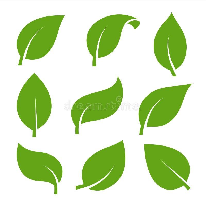Des Blattvektorlogos Eco-Natur grüne Farbflacher Ikonensatz stock abbildung