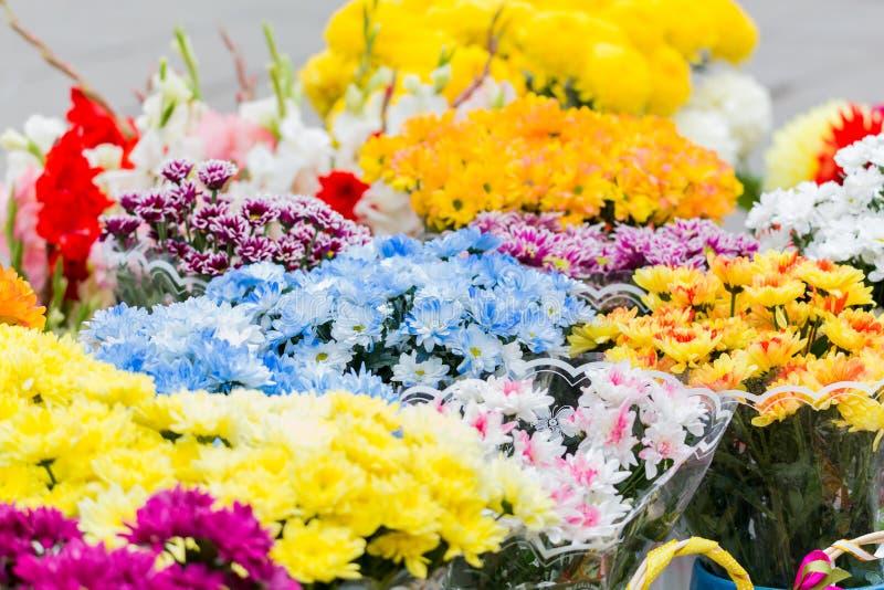Des bouquets des chrysanthèmes multicolores sont vendus à un marché en plein air Fleurs jaunes, bleues, rouges, pourpres photo libre de droits