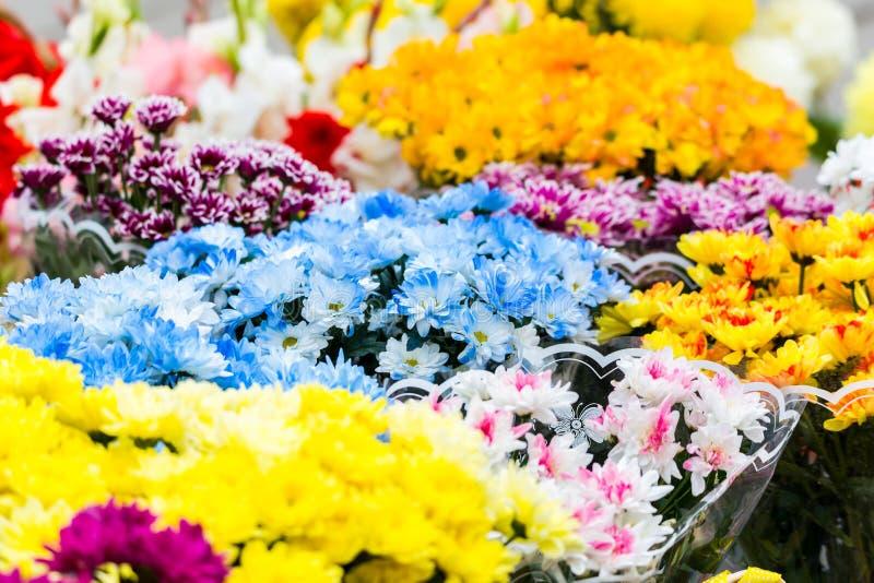 Des bouquets des chrysanthèmes multicolores sont vendus à un marché en plein air Fleurs jaunes, bleues, rouges, pourpres photos libres de droits