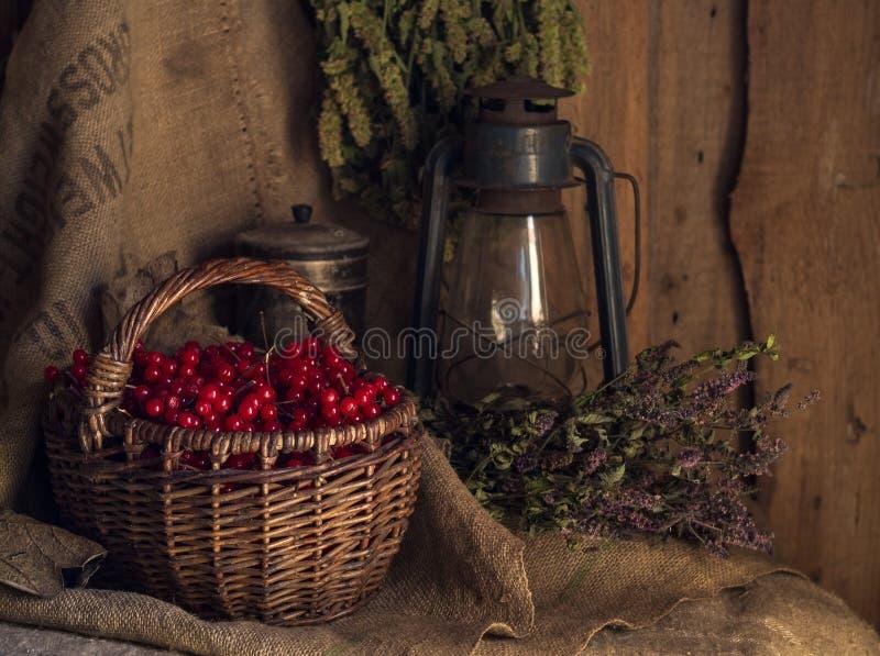 Des Dorfs Leben noch Retro- Kerosinlampe, Korb, Viburnumbeeren, getrocknetes Oregano und Minze auf schäbigem Sack stockfotos