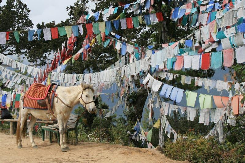 Des drapeaux de prière ont été accrochés dans une forêt près de Paro (Bhutan) images stock