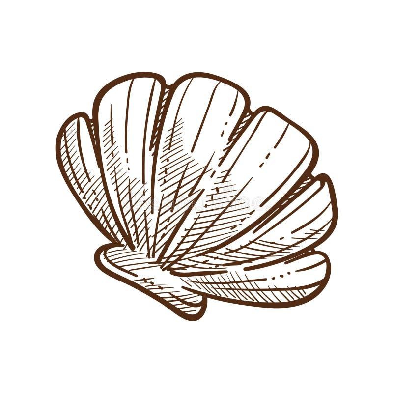 Des einfarbigen weiße Vektorillustration Skizzenentwurfs der Muschelschale lizenzfreie abbildung