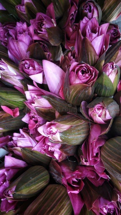 Des fleurs de Lotus décorant des dieux photo stock
