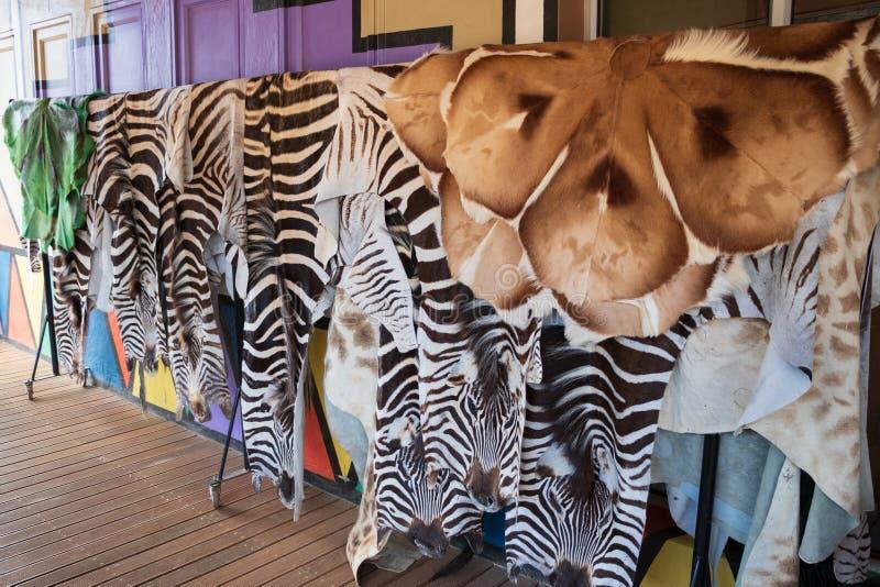 Des fourrures sont offertes en Afrique du Sud photographie stock