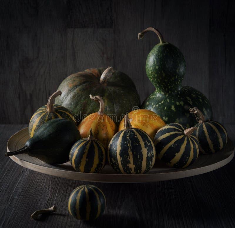 Des Herbstes Leben noch Eine Gruppe verschiedene Arten von pumpkins1 stockbild