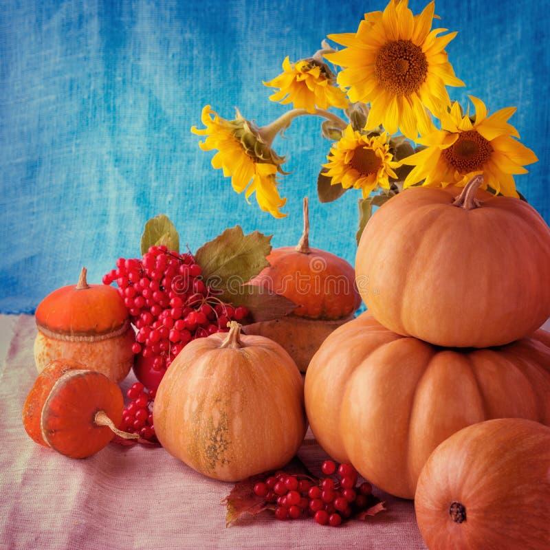 Des Herbstes Leben noch Kürbise für Halloween und Danksagungs-Tag lizenzfreie stockfotos