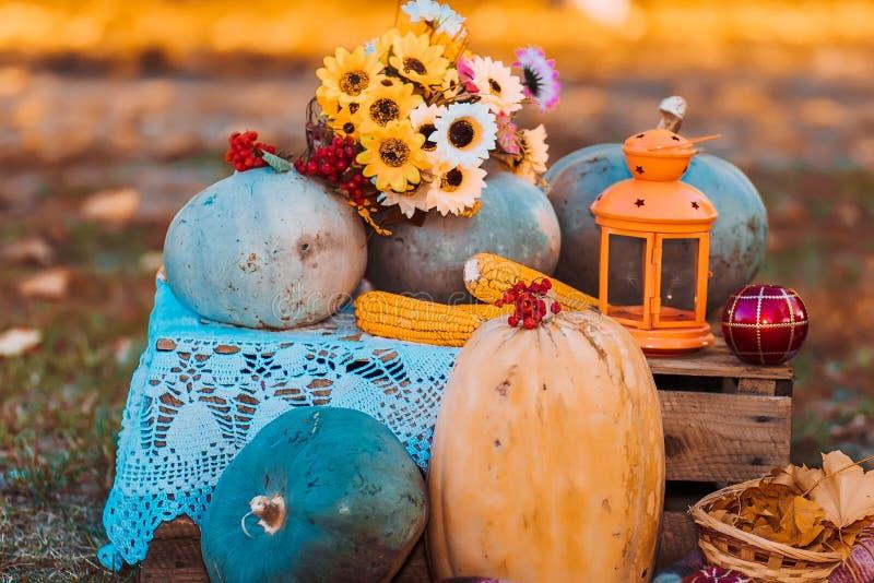 Des Herbstes Leben noch Kürbise, Mais, Viburnum, Laub draußen stockfotografie