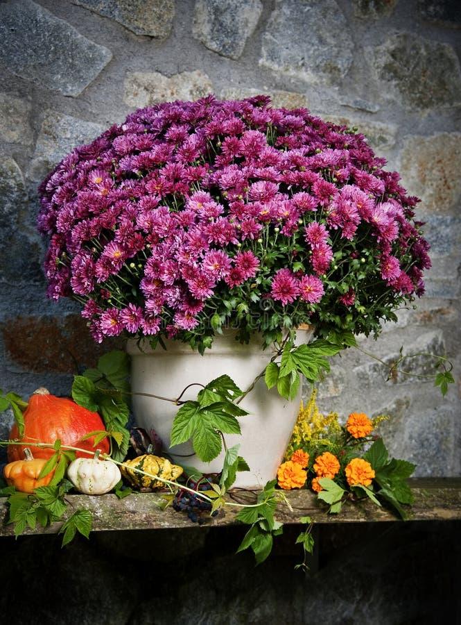 Des Herbstes Leben noch mit Herbstblumen stockfoto