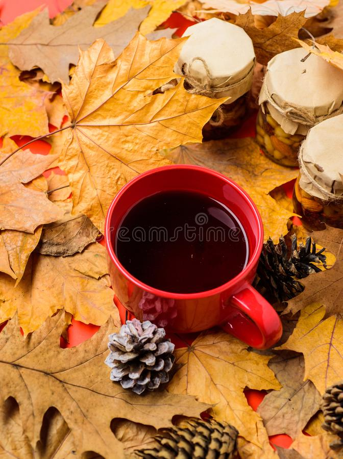 Des Stau-Honigs des Satzes drei natürliche Bonbons in den Gläsern und im Becher bedeckten gefallenen Blättern des Tees Hintergrun stockfotos