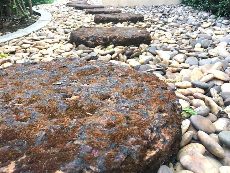 Des Steinniedrige Winkelsicht fußwegenschrittes des roten Backsteins über kleinen Felsen im Garten lizenzfreies stockbild