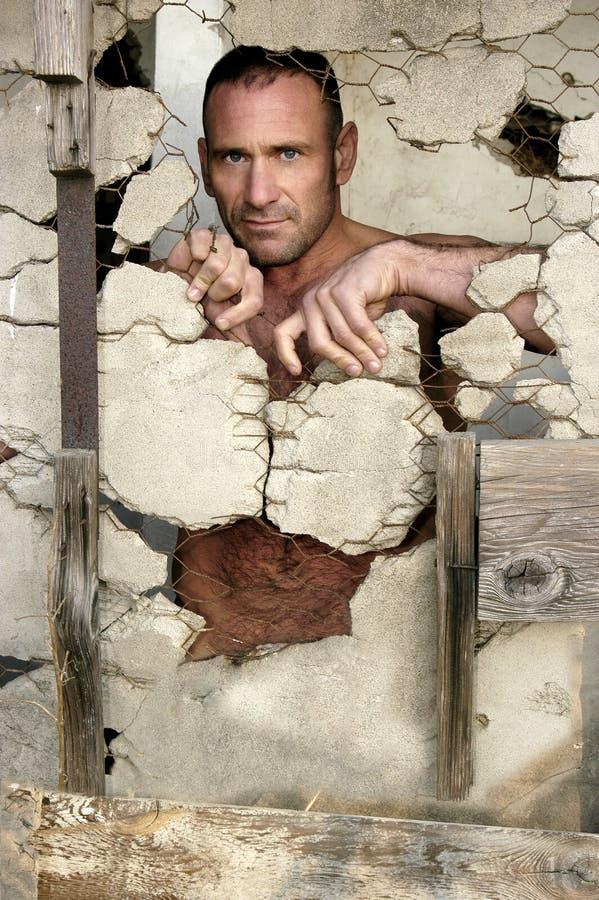 Des supports rocailleux et beaux nus d'homme derrière un mur décomposé photos libres de droits